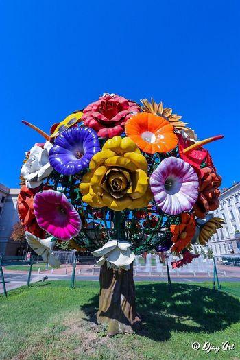 Un bouquet...