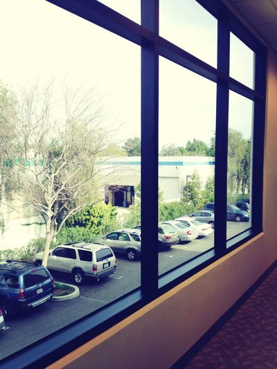 View Outside My Office Is Unspectacular