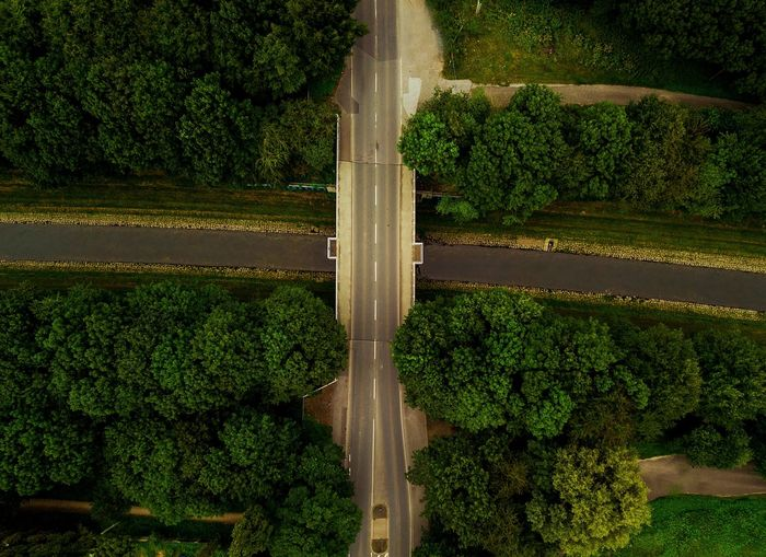 Off Road Street Tones Fromsky Above Aerial Drone  Growth Green Color Tree Plant Outdoors Nature Water Beauty In Nature Leaf Grass