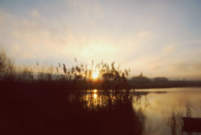 sunny soft morning...taken with clingfilm. Nature Softness Soft Focus Cling Film Beauty In Nature Scenics Lake Landscape Tranquil Scene Shadows And Light Grass Field Idyllic Sceneries My Point Of View Sunrise Silhouette Nature Cold Temperature Water Reflection Reinheimer Teich