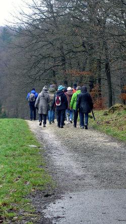 field day Casual Clothing Day Field Day Freundschaft Friendship Hike Outdoors Real People Rear View Togetherness Walking Walking Tour Wanderlust Wandertag Wiehengebirge