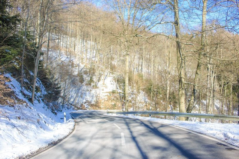 Taking the scenic route. Winter Snow Nature Cold Temperature Road Bare Tree The Way Forward Tranquility Tree Day Beauty In Nature Outdoors Transportation Tranquil Scene No People Scenics Sunlight Landscape