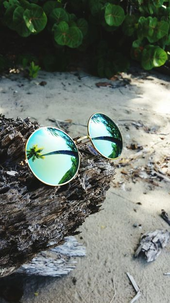 Reflection High Angle View Beach Sand Nature Shore Outdoors No People Tranquility Palm Tree Palm Leaf Day Plant Beauty In Nature Nature Photography Beach View Eyeemphoto Eyemphotography Eyewear Magazine Eyewear Impressions Mirror Glasses