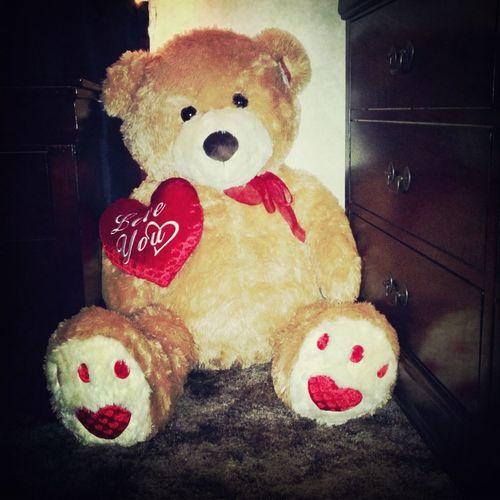 Teddy bear my boyfriend gave me for v-day.