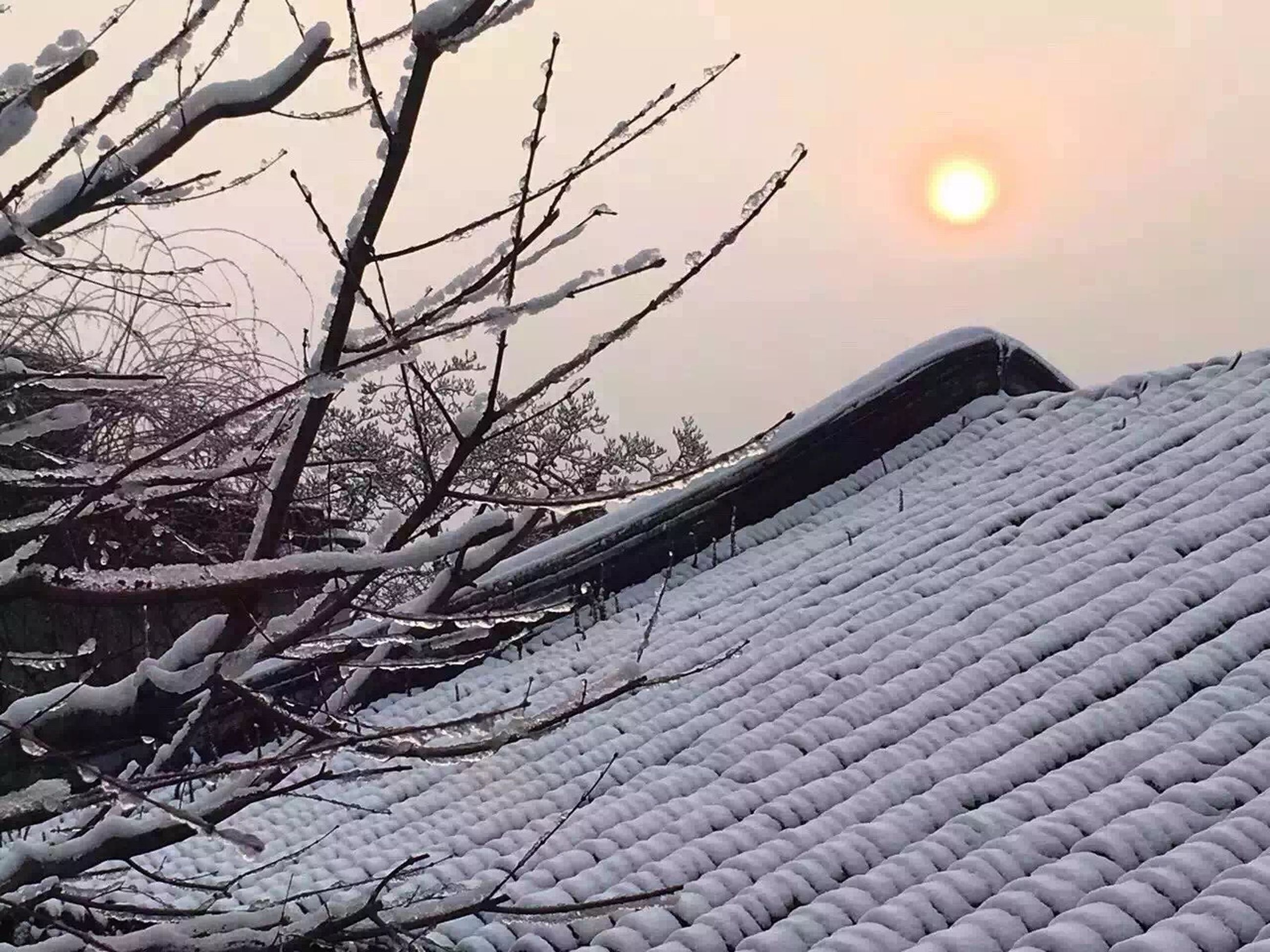 sunset, bare tree, branch, sky, sun, nature, winter, tranquility, tree, scenics, orange color, beauty in nature, tranquil scene, snow, season, built structure, sunlight, cold temperature, outdoors, no people