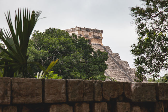 Chichen Itza Chichen-Itzá Mayan Mayan Ruins Yúcatan Ancient Ancient Civilization Architecture Building Exterior Built Structure Day Growth History Low Angle View Maya Nature No People Old Ruin Outdoors Sky Travel Destinations Tree Yucatan Mexico