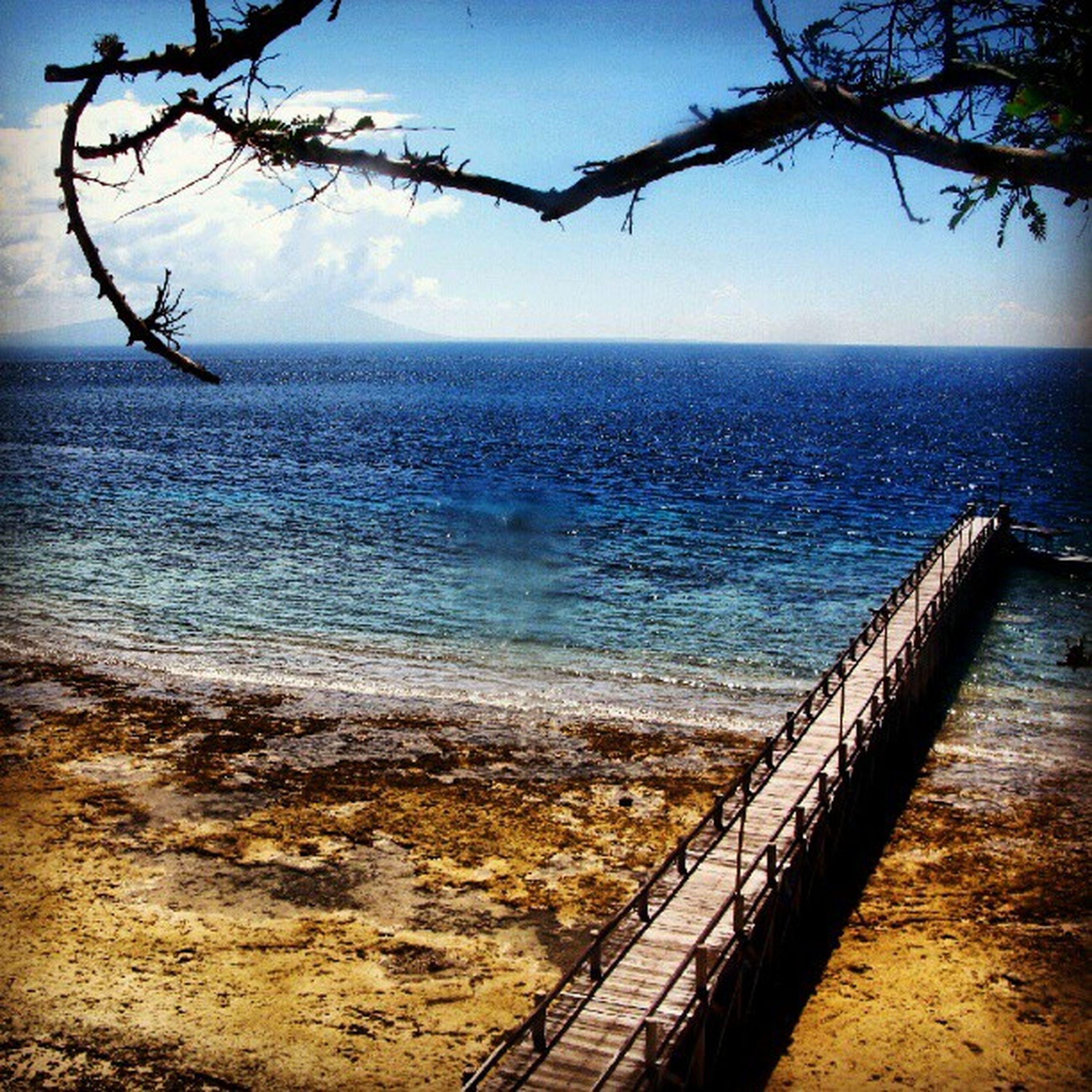 sea, water, horizon over water, tranquility, tranquil scene, scenics, sky, railing, beauty in nature, beach, nature, shore, idyllic, fence, outdoors, no people, branch, pier, blue, ocean