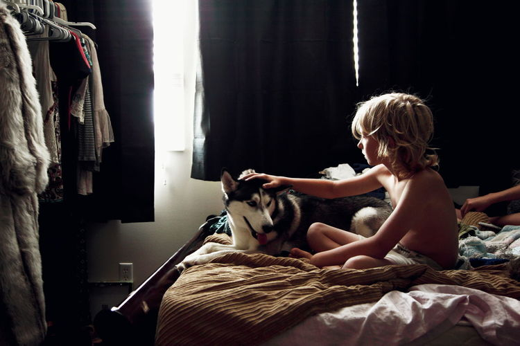 Shirtless boy touching siberian husky dog on bed