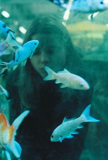 35mm Film Analogue Photography Film Ishootfilm Melancholic Portrait Of A Woman Analog Aquarium Close-up Film Photography Filmisnotdead Fish Girl Indoors  Portrait Underwater Water Young Women