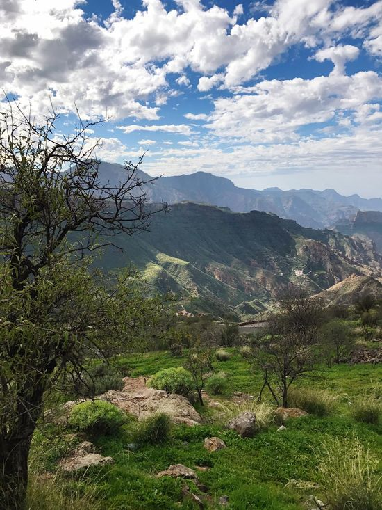 Gran Canaria Tejeda Mountain Nature Mountain Range Scenics Beauty In Nature Landscape Tranquility Tranquil Scene Cloud - Sky No People Sky Tree Day Hiking Outdoors Travel Destinations The Great Outdoors - 2017 EyeEm Awards