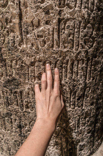 Close-up of human hand against tree trunk