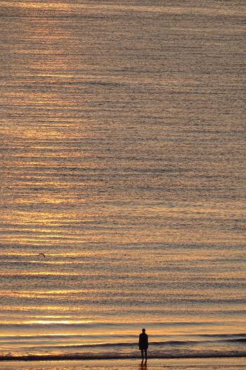 Silhouette man standing on beach