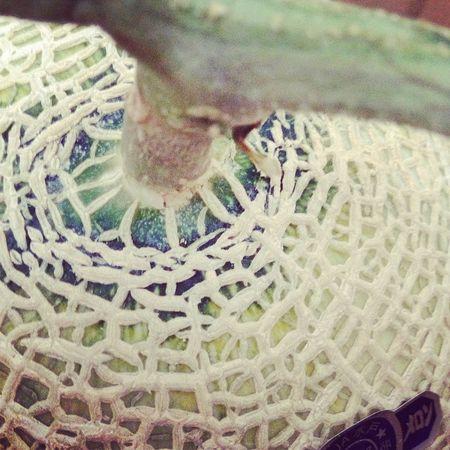 Melon お届けもの