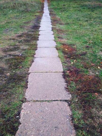 Old concrete tile path road track on the grass Tile Tiles Concrete Concrete Tiles Old Road Old Path Old Track High Angle View Road Grass Green Color Pathway Long Walkway Empty Road The Way Forward
