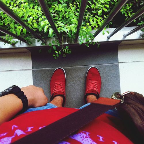Escaping. Fashion Vans Red