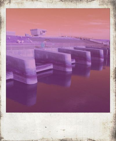 Taking Photos Polamatic Purple Architecture
