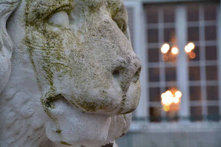Close-Up Of Lion Statue By Building