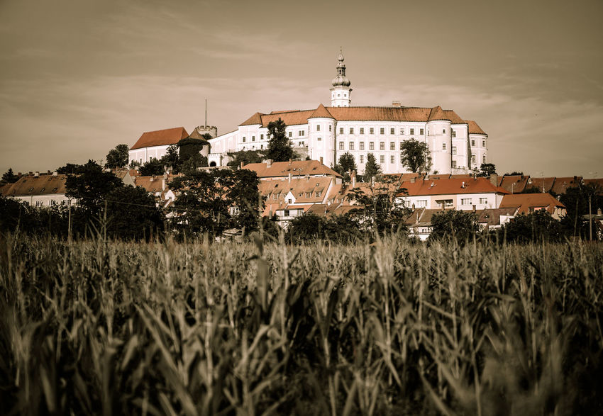 Mikulov Castle, Czech republic Austria Castle Castles Dramatic Sky Moody Sky Vienna Vienna Austria Vienna, Austria Architecture Building Exterior Built Structure Cloud - Sky Europe Field Grass Heritage Heritage Building Landmark Landscape Mansion Mikulov Mikulov, Czech Republic Moravia Outdoors Travel Destinations
