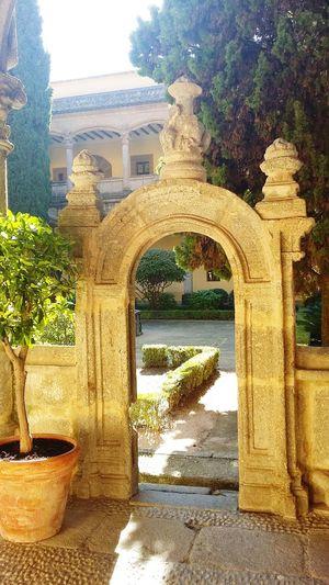 Portical church garden Built Structure Arch