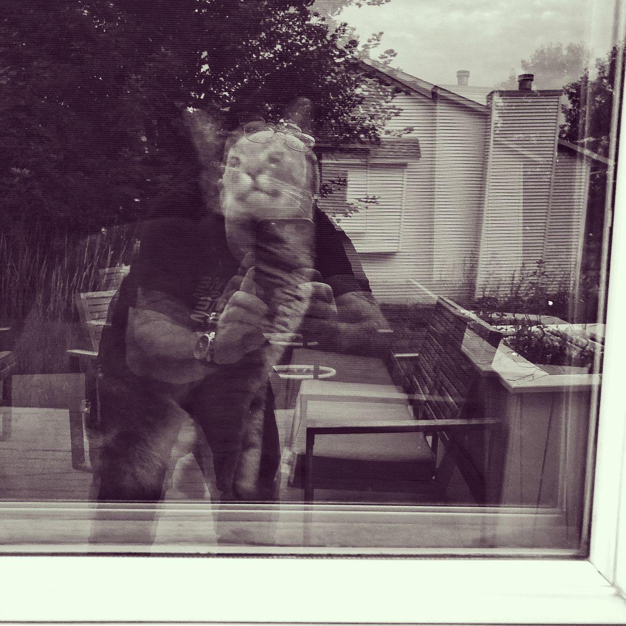 MAN HOLDING GLASS WINDOW