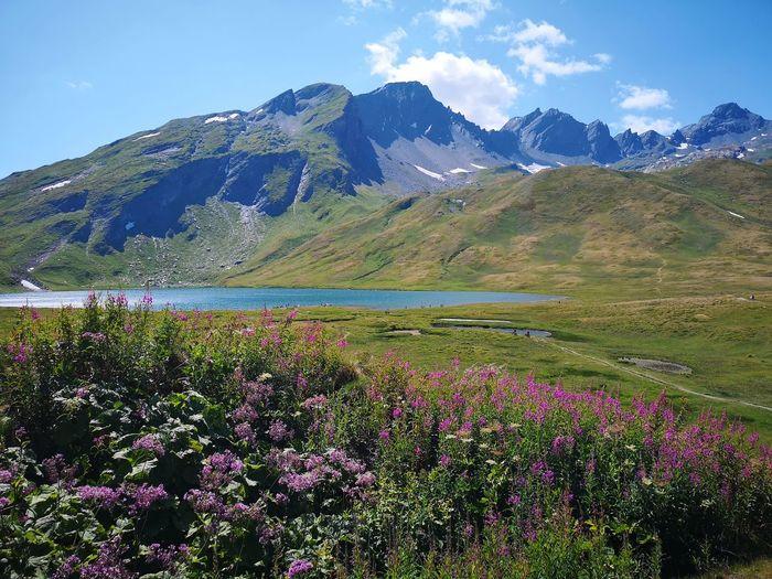 Nature Lake Day