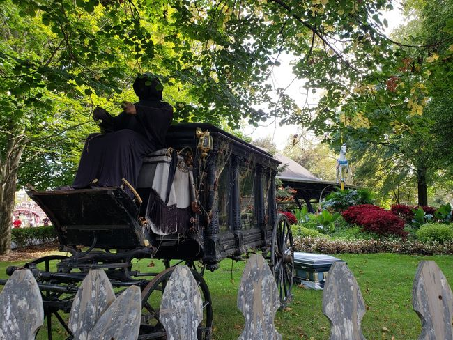 Phantom Fright Nights Fence Old-fashioned Coffin Hearse Pennsylvania Tourism Creepy Horror Scary Halloween Halloween Decorations Decorations Carousel Carousel Horse Horse Amusement Park Amusement Park Ride Ride Theme Park Tree Merry-go-round Carousel Horses Male Likeness Human Representation