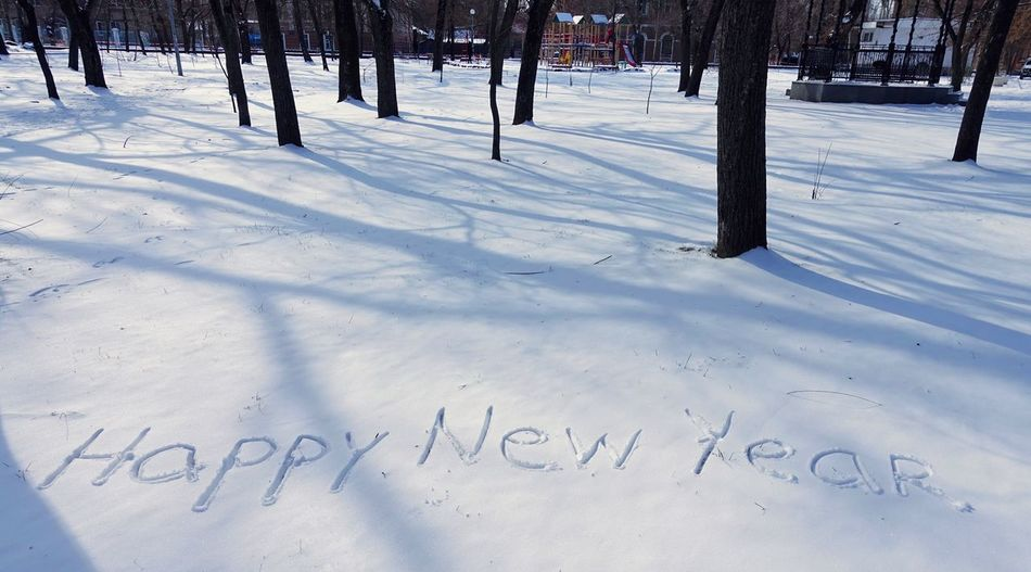 Winter Snow Cold Temperature Nature Tree White Color Day No People Beauty In Nature Covering Land Plant Outdoors Field Happy New Year Xmas Snow ❄ Snow Covered Text Communication Frozen Western Script Trunk Congratulations