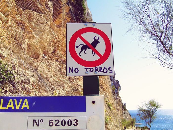 Communication Warning Sign Text Tree Danger Day Guidance No People Road Sign Outdoors Close-up Torro No Dogs No Dogs Allowed No Dogs On Beach Mallorca Canary Islands An Eye For Travel