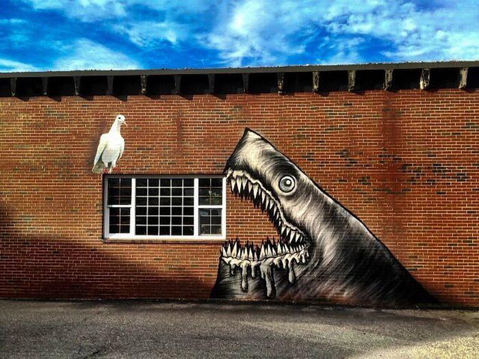 Shark Seagull Graffiti Window
