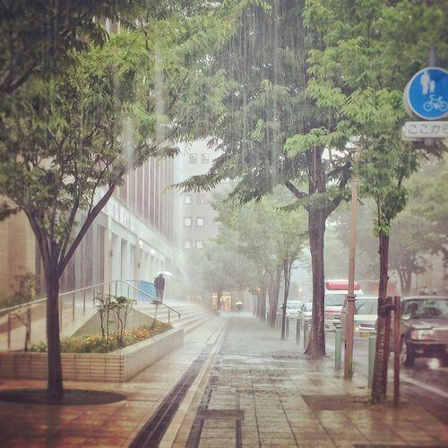 Rainy Days The Way Forward