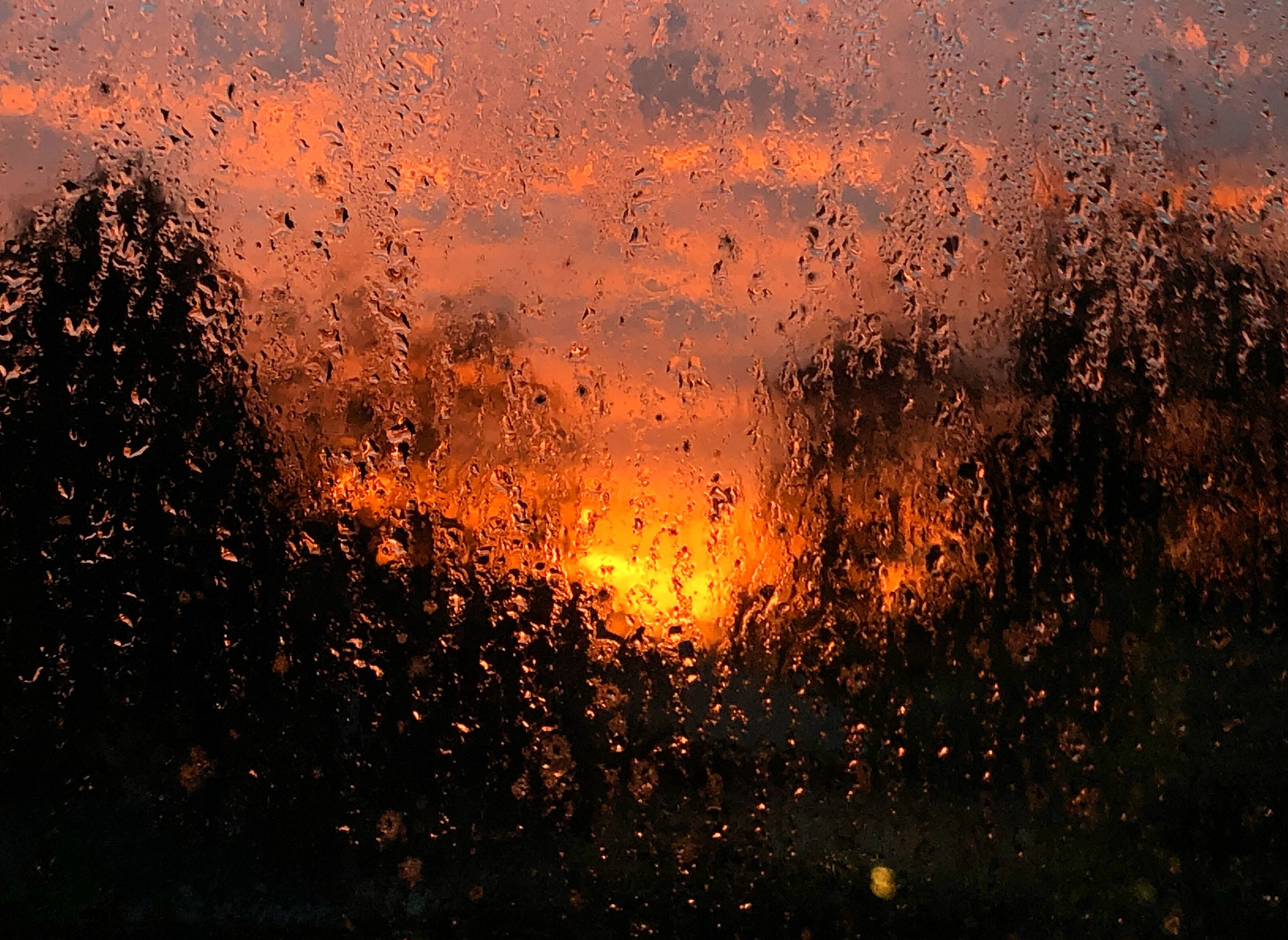 wet, rain, drop, water, orange color, no people, window, nature, sunset, glass - material, full frame, transparent, backgrounds, close-up, outdoors, rainy season, monsoon, raindrop, glass