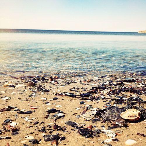 Lobach irishka Relaxing Enjoying The Sun Water_collection EyeEm Nature Lover