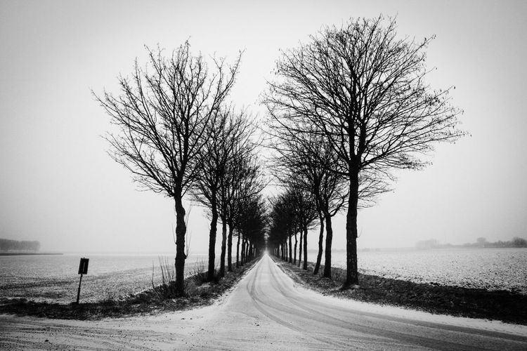 Tree Nature Snow Snowing Tranquility Beauty In Nature Outdoors Tranquil Scene Scenics Sky Bare Tree Day Blackandwhite No People Zeeuws Vlaanderen Zeeland
