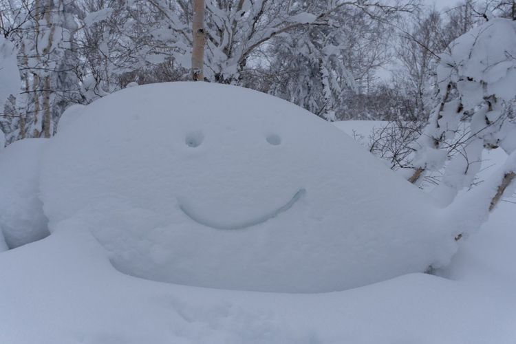 Happy snow pillows in Japan Snowboarding Japan Winter Snow Cold Temperature Nature