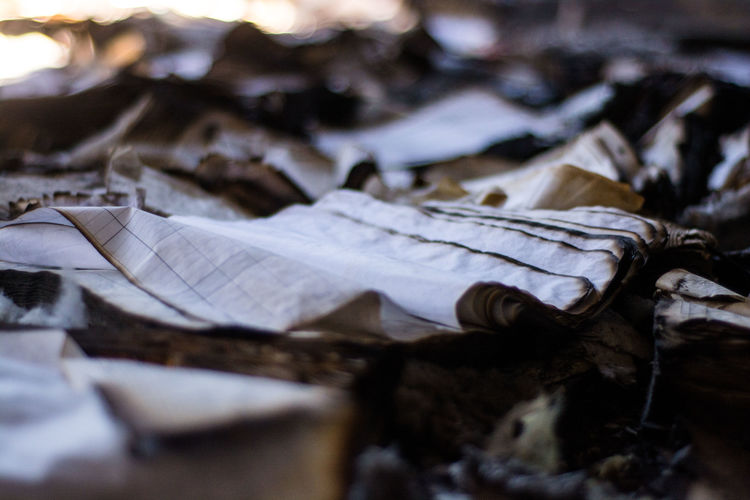 Close-Up Of Burnt Papers