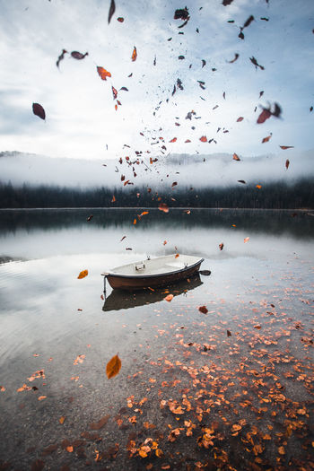 Water Lake Nature Reflection Transportation Sky Nautical Vessel Mode Of Transportation Cloud - Sky Beauty In Nature Outdoors Sea No People Air Vehicle Tranquility Day Tranquil Scene Mid-air Dusk Flying Floating On Water Boat Leaves Fall Beauty Foggy Autumn Mood