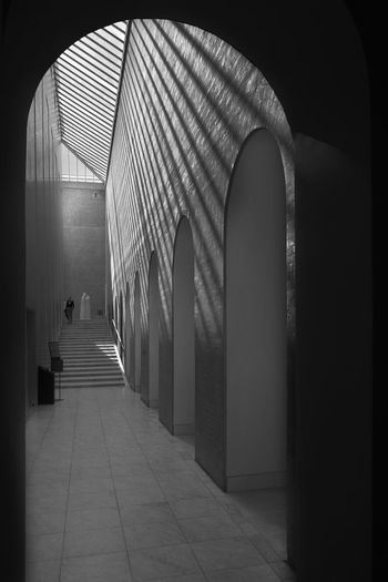 Ny Carlsberg Glyptotek Archineos Copenhagen Ny Carlsberg Glyptotek København Ugo Villani Architecture Architettura B&n Fotografia B&w Bianco E Nero Black And White Built Structure Carlsberg Indoors  Monochrome Museum Shadows