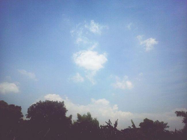 Sunny sunday :)