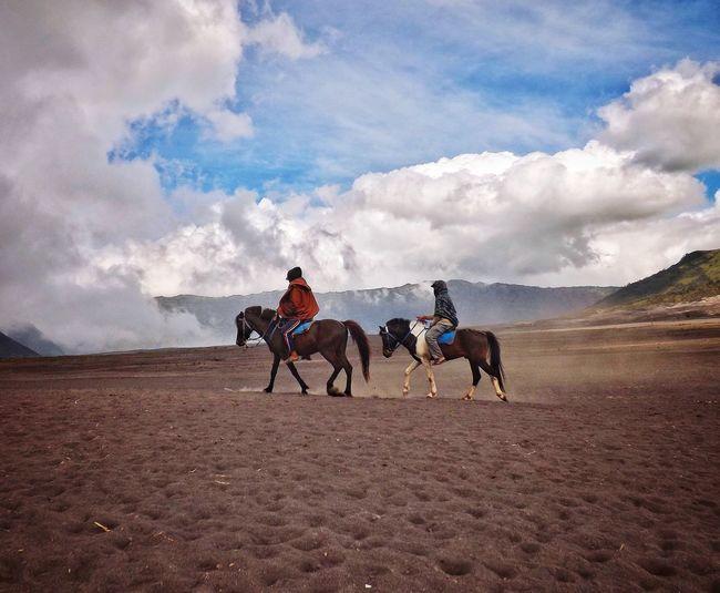 Full length of women riding horse on field against sky
