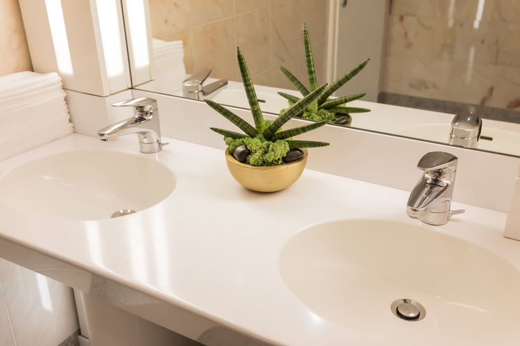 Bathroom Bathroom Bathroom Sink Domestic Bathroom Domestic Room Faucet High Angle View Home Home Interior Household Equipment Hygiene Indoors  Mirror Nature No People Plant Potted Plant Reflection Sink Wash Bowl White Color