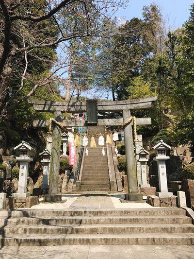 鳥居 神社 A Shrine