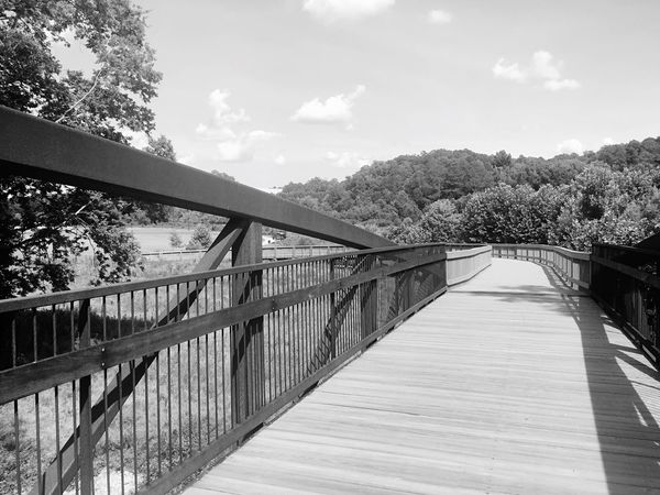Shades Of Grey EyeEm Best Shots - Black + White Blackandwhite Photography B&w Photography Canton Canton Park Hanging With The Family Wooden Trail