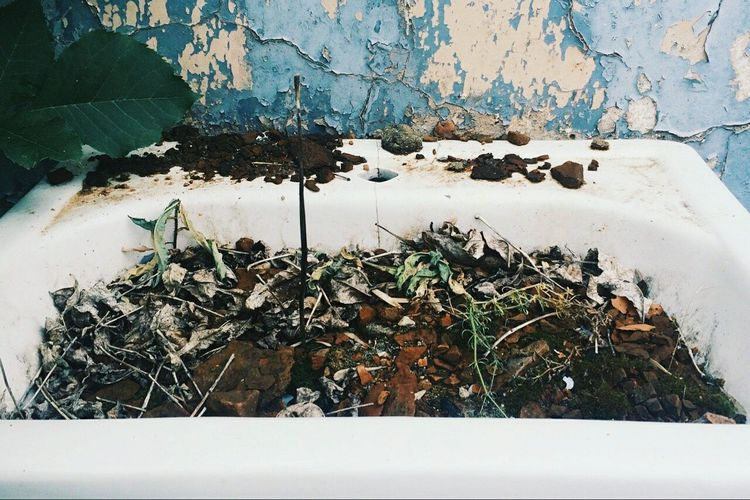 VSCO Shapes Architecture Colors Creativity Plants In Street Inspirations