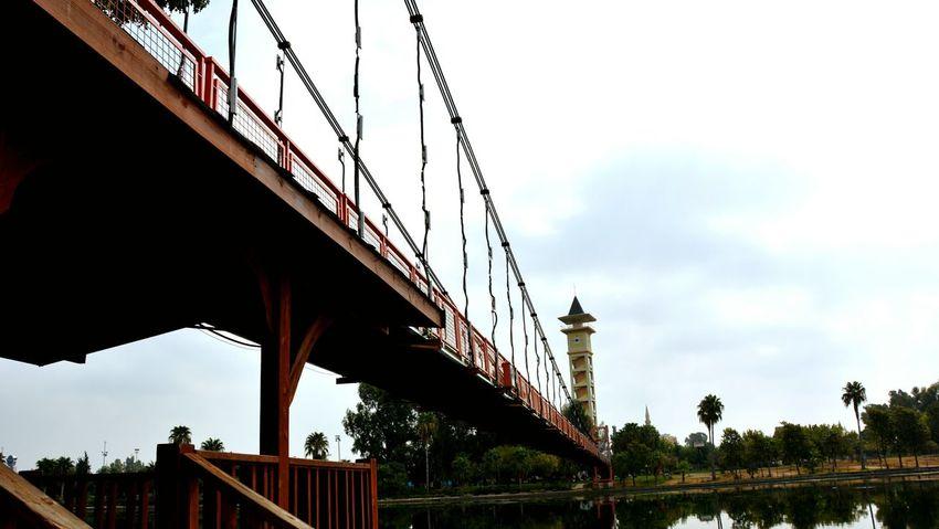 Hi! Hello World Check This Out Photography Enjoying Life Taking Photos Bridge Bridge View Sky Sky_collection Sky_collection Bridge Photography Nature