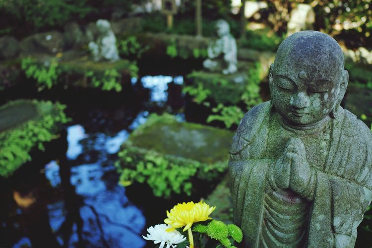 Kamakura Japan Hasedera Temple Manji
