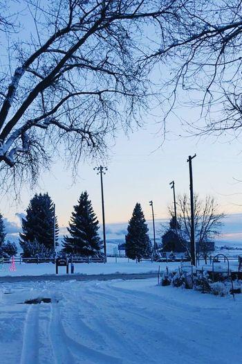 BRRRR ❄️ Snow ❄ Landscape Winter Wonderland Winter Sunset