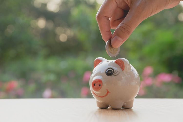 Close-up of person inserting coin in piggy bank on table