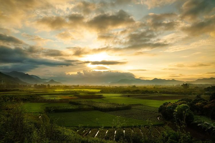 Conghua Landscape Tranquil Scene Grass Field Cloud - Sky Scenics Tranquility Sky Beauty In Nature Rural Scene Cloudy Agriculture Nature Crop  Farm Sunbeam Cloud Grassy Remote Growth Sunrise Guangzhou Conghua China China Photos