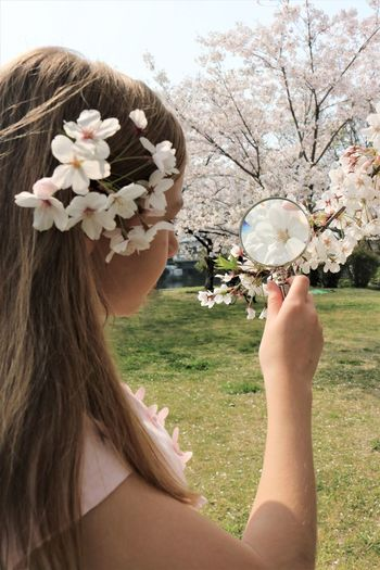 Girl looking at cherry blossoms through magnifying glass