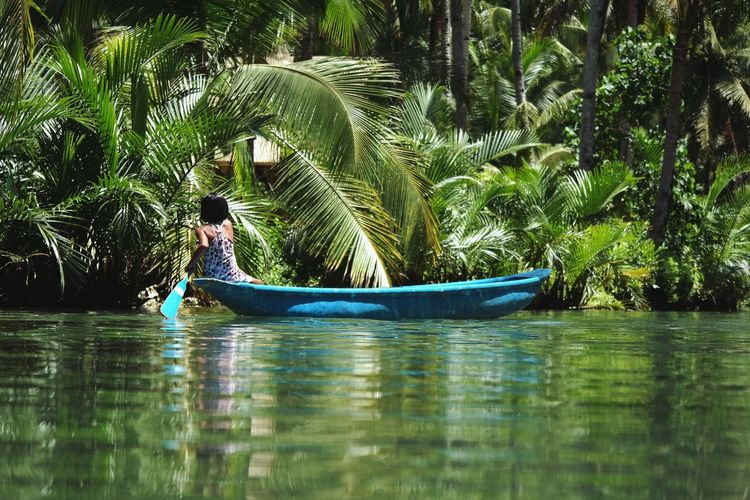 Man in boat on palm trees